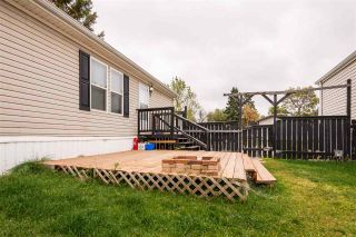 Photo 3: 48 Willow Park Estates: Leduc Mobile for sale : MLS®# E4214831