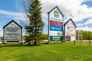 Photo 44: 143 CRYSTAL SPRINGS Drive: Rural Wetaskiwin County House for sale : MLS®# E4247412