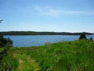 Photo 7: - Little Liscomb Road in Little Liscomb: 303-Guysborough County Vacant Land for sale (Highland Region)  : MLS®# 201728127
