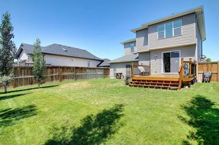 Photo 37: 317 Ranch Close: Strathmore Detached for sale : MLS®# A1128791