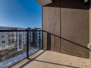 Photo 25: 1611 4641 128 Avenue NE in Calgary: Skyview Ranch Apartment for sale : MLS®# A1029088