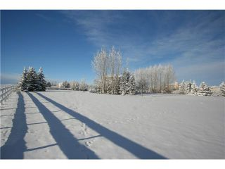 Photo 3: 127 ALANDALE Place SW in CALGARY: Rural Rocky View MD Residential Detached Single Family for sale : MLS®# C3551100