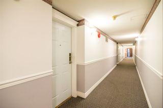 Photo 5: 101 1999 SUFFOLK Avenue in Port Coquitlam: Glenwood PQ Condo for sale : MLS®# R2201692