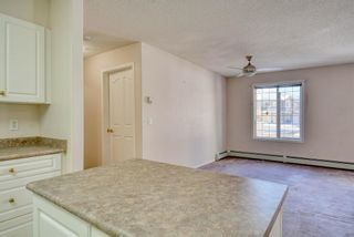 Photo 11: 3117 6818 Pinecliff Grove NE in Calgary: Pineridge Apartment for sale : MLS®# A1069420