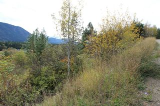 Photo 2: 36 2481 Squilax Anglemont Road in Lee Creek: North Shuswap Land Only for sale (Shuswap)  : MLS®# 10072100