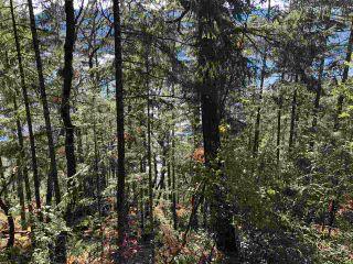 Photo 6: LOT 108 SEAVIEW Road in Sechelt: Sechelt District Land for sale (Sunshine Coast)  : MLS®# R2577750
