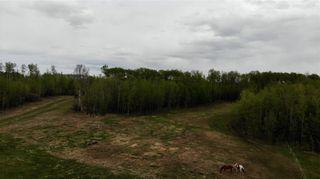 Photo 16: Viewmar Drive: Rural Ponoka County Land for sale : MLS®# C4288523