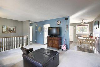 Photo 16: 1711 65 Street NE in Calgary: Pineridge Detached for sale : MLS®# A1038776