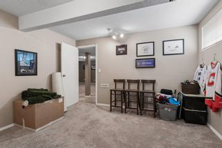 Photo 29: 296 Mt. Brewster Circle SE in Calgary: McKenzie Lake Detached for sale : MLS®# A1118914