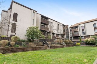 """Photo 15: 404 385 GINGER Drive in New Westminster: Fraserview NW Condo for sale in """"Fraser Mews"""" : MLS®# R2556053"""