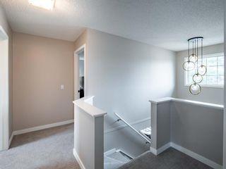 Photo 15: 161 Douglasbank Way SE in Calgary: Douglasdale/Glen Detached for sale : MLS®# A1141406