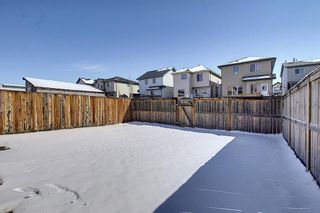 Photo 42: 161 Covebrook Place NE in Calgary: Coventry Hills Detached for sale : MLS®# A1097118