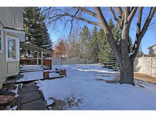 Photo 18: 119 LAKE MEAD Place SE in CALGARY: Lk Bonavista Estates Residential Detached Single Family for sale (Calgary)  : MLS®# C3563863