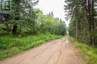 Photo 8: Lots Brooklyn RD in Midgic: Vacant Land for sale : MLS®# M136510