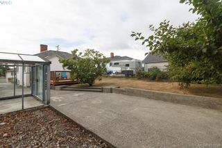Photo 21: 260 Regina Ave in VICTORIA: SW Tillicum House for sale (Saanich West)  : MLS®# 824726