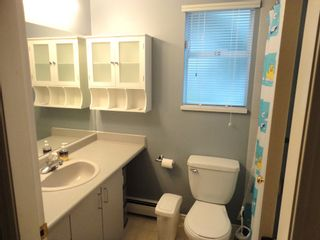 Photo 22: 9168 160A STREET in MAPLE GLEN: House for sale