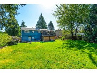 Photo 36: 3647 197A Street in Langley: Brookswood Langley House for sale : MLS®# R2578754