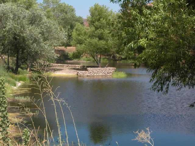 Main Photo: RAMONA Lot / Land for sale: 17806 Oak Hollow