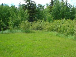 Photo 2: 41 Heron Point Cl: Rural Wetaskiwin County Rural Land/Vacant Lot for sale : MLS®# E4233949
