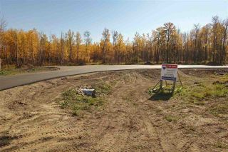 Photo 3: Lot 7 27331 Township Road 481: Rural Leduc County Rural Land/Vacant Lot for sale : MLS®# E4243091
