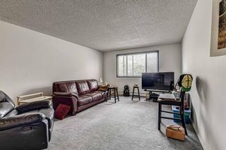 Main Photo: 201 231 64 Avenue NW in Calgary: Thorncliffe Apartment for sale : MLS®# A1113627