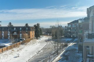 Photo 9: 311 2 HEMLOCK Crescent SW in Calgary: Spruce Cliff Apartment for sale : MLS®# A1086959