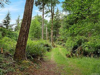 Photo 68: Lot 2 Eagles Dr in : CV Courtenay North Land for sale (Comox Valley)  : MLS®# 869395