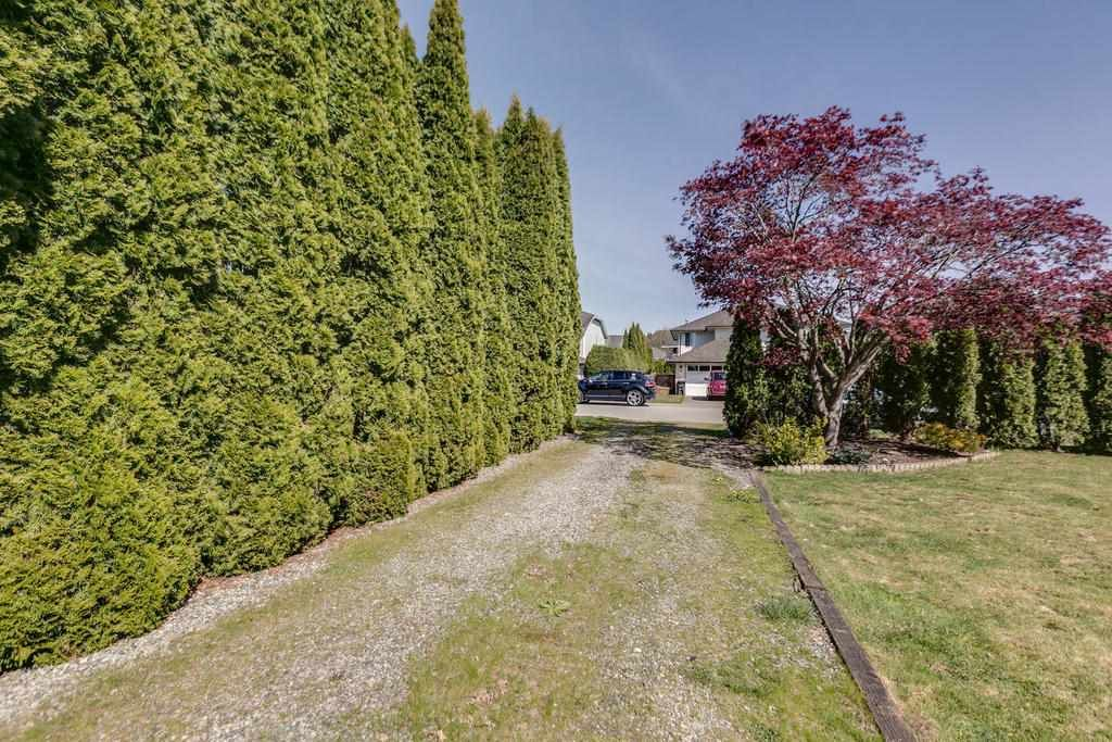 """Photo 20: Photos: 12403 188 Street in Pitt Meadows: West Meadows House for sale in """"HIGHLAND PARK AREA"""" : MLS®# R2261078"""