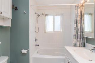 Photo 15: 21060 118 Avenue in Maple Ridge: Southwest Maple Ridge House for sale : MLS®# R2153246