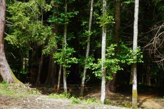 Photo 22: 317 MARINERS Way: Mayne Island Land for sale (Islands-Van. & Gulf)  : MLS®# R2474878