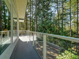 Photo 17: 6479 Old West Saanich Rd in : CS Oldfield House for sale (Central Saanich)  : MLS®# 872724
