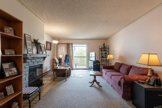 Photo 7: 304 585 S Dogwood St in : CR Campbell River Central Condo for sale (Campbell River)  : MLS®# 873526
