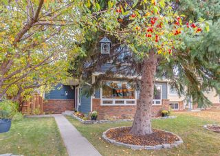 Photo 48: 243 Midridge Crescent SE in Calgary: Midnapore Detached for sale : MLS®# A1152811