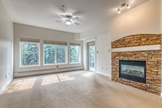 Photo 9: 323 20 Discovery Ridge Close SW in Calgary: Discovery Ridge Apartment for sale : MLS®# A1128263