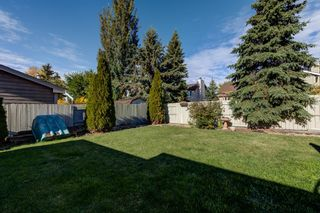 Photo 42: 12 Willowbrook Crescent: St. Albert House for sale : MLS®# E4264517