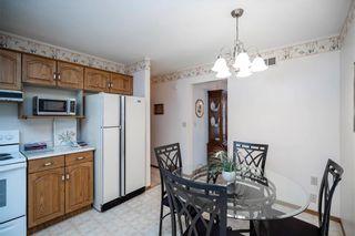 Photo 16: 169 Kildonan Meadow Drive in Winnipeg: Kildonan Meadows Residential for sale (3K)  : MLS®# 202008495