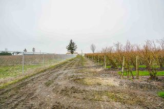 Photo 20: 34659 TOWNSHIPLINE Road in Abbotsford: Matsqui House for sale : MLS®# R2560847