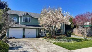 Photo 1: 2481 WILDING WAY in North Vancouver: House for sale : MLS®# R2577487