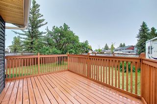 Photo 19: 144 Martinwood Court NE in Calgary: Martindale Detached for sale : MLS®# A1126396