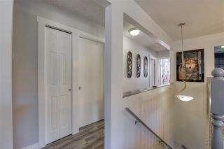 Photo 19: 11299 134 Street in Surrey: Bolivar Heights House for sale (North Surrey)  : MLS®# R2488122