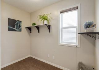 Photo 16: 189 COPPERPOND Road SE in Calgary: Copperfield Detached for sale : MLS®# A1091868