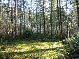 Photo 7: Lot 6 Irene Rd in : Isl Quadra Island Land for sale (Islands)  : MLS®# 863545