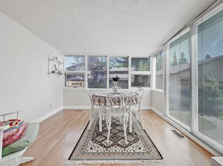 Photo 9: 216 Whitewood Place NE in Calgary: Whitehorn Detached for sale : MLS®# A1116052