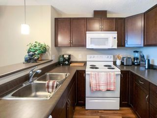 Photo 14: 414 6070 SCHONSEE Way in Edmonton: Zone 28 Condo for sale : MLS®# E4248308