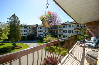 """Photo 16: 210 10180 RYAN Road in Richmond: South Arm Condo for sale in """"STORNOWAY"""" : MLS®# R2369325"""
