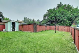 Photo 23: 4259 49 Street NE in Calgary: Whitehorn Detached for sale : MLS®# A1131311