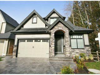 Photo 1: 17147 3A AV in Surrey: Pacific Douglas Home for sale ()  : MLS®# F1400515