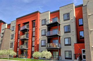 Photo 19: 304 AMBLESIDE LI SW in Edmonton: Zone 56 Condo for sale : MLS®# E4124917