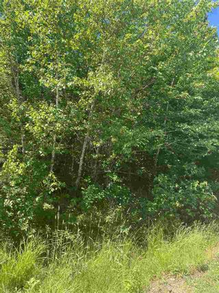Photo 4: Lot 1 North River Road in Aylesford Lake: 404-Kings County Vacant Land for sale (Annapolis Valley)  : MLS®# 202011590