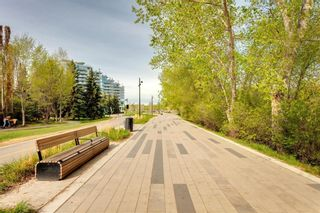 Photo 28: 103 680 Princeton Way SW in Calgary: Eau Claire Apartment for sale : MLS®# A1109337